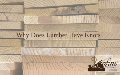Why Does Lumber Have Knots?