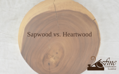 Sapwood vs. Heartwood for Woodworking