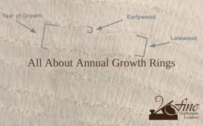All About Annual Growth Rings